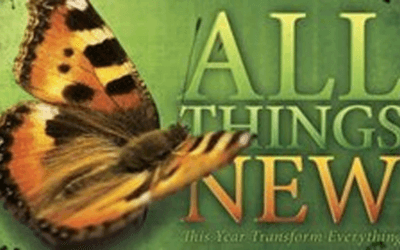 Beautiful Transformation – Women's Small Group Bible Study in Pineville